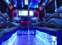 Titan Party Bus overview picture